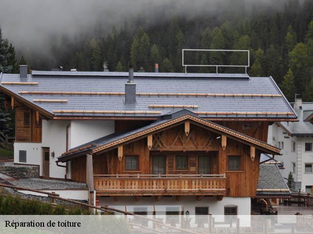 refaire son toit free refaire sa toiture par soimme with refaire son toit fabulous refaire son. Black Bedroom Furniture Sets. Home Design Ideas