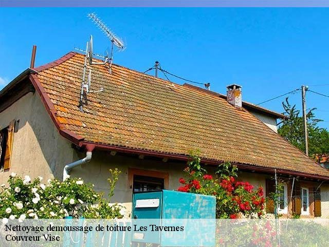 Nettoyage démoussage de toiture à Les Tavernes tél: 076 ...